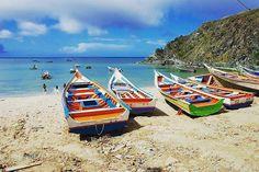 Siempre bella #PlayaManzanillo #IsladeMargarita  Tengan feliz y armonioso fin fe semana largo. @Regrann from @turistukeando -  #PlayasDeMargarita Una de las playas que más nos gusta recomendar es Playa Manzanillo una pequeña bahía colorida con un asentamiento de pescadores. Un poco fría y con oleaje moderado. De las cosas que más nos gusta es quepuedes disfrutar de la faena de pesca de los habitantes de la bahía   Nosotros te llevamos a disfrutar de las hermosas playas de #Margarita paquetes…
