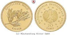 RITTER BRD, 20 Euro 2013 A, Der Deutsche Wald, Kiefer, st #coins #numismatics