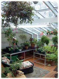 lean to conservatory greenhouse Small Greenhouse, Greenhouse Gardening, Greenhouse Ideas, What Is A Conservatory, Orchid House, Growing Orchids, East Of Eden, Flower Garden Design, Dream Home Design