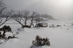 Snowy Mountains - Australia by sydneydawg2006, via Flickr