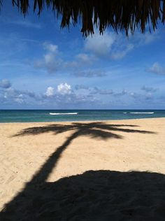 It is not hard to see how Dreams Palm Beach got it's name!