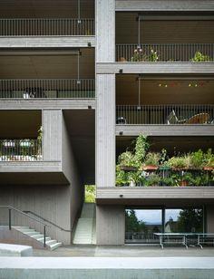 Kaferber Housing / Buchner Bründler Architekten