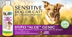 Is your pet hyper sensitive to almost everything? Feel like you can't use a premium shampoo to give them the freshly groomed look? Think again. #dog #shampoo #grooming #hypo #aloe #sensitive #natural