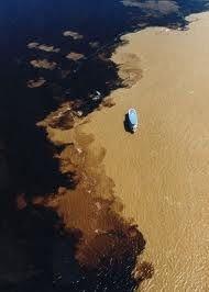 Amazon, where the Rio Negro and Rio Solimoes come together but do not mix. encontro das aguas - Pesquisa Google