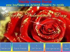 Valentine Day 2016 is the Famous Event Of The World In this Festival Every People Send Flowers, Gifts, Sweets, Dry Fruits To Our Relatives and Friends Through http://www.buyflower.co.in/send-flowers-to-noida http://www.buyflower.co.in/send-flowers-to-noida We Have Provide:- i) Fast Delivery ii)Quality Products iii) Mid Night Delivery iv) 24*7 Delivery Option Is Available