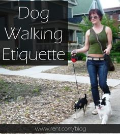 Dog walking etiquette is especially important when you live in a city because there are so many people and pets around. To turn yourself into an expert dog walker, follow these four tips. #renting #dogs