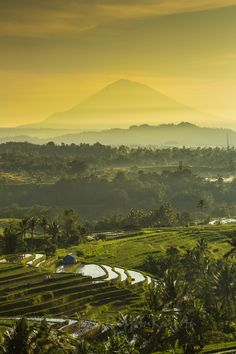 Jatiluwih, Bali For great value, zero deductible international travel insurance available up to age 85, get a free quote at http://www.clicktravelcover.com/