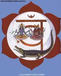 svadhishthanachakra