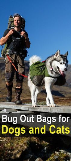 Bug Out Bags for Dogs & Cats   Animal Survival Bag   Emergency Bag for Dogs   How to Make a Bug Out Bag for Pets - Tap The Link Now To Find Gadgets for Survival and Outdoor Camping