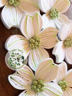 Blüten-Hartriegel #1
