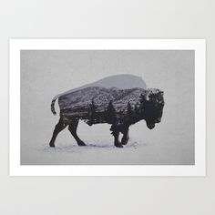 The American Bison Art Print by Davies Babies - $21.99