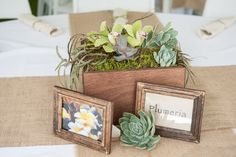 Tables named for flowers/plants (photo by: Rachel Robertson Photography)