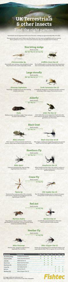 Fishtec uk terrestrial fly fishing infographic