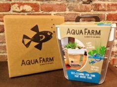Aqua farm- Self cleaning fish tank, that grows food!