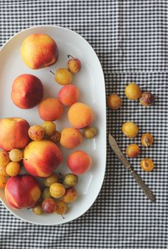stone fruit | egg and dart