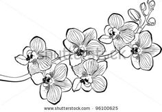 Image result for dibujos de orquideas