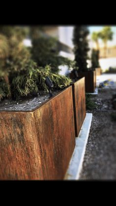 Weathering steel has a natural protective quality that not only looks amazing put protects itself from rusting all the way through. Metal Planter Boxes, Corten Steel Planters, Weathering Steel, Backyard, Patio, Can Design, Raised Garden Beds, How To Dry Basil, Cube
