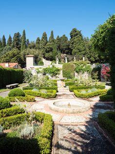 Cimiez Garden Nice