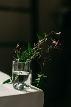 Love the simplicity of a few flowers in a glass of water. Photo mk sadler.