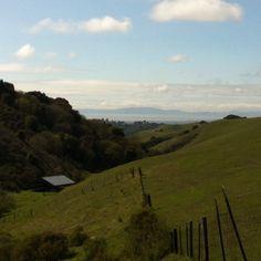 Views of the San Francisco Bay from our 10+ mile hike on the Pleasanton Ridge | Photo Paula Cruz