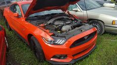 2015 Ford Mustang GT Performance Package 5.0 totalled.
