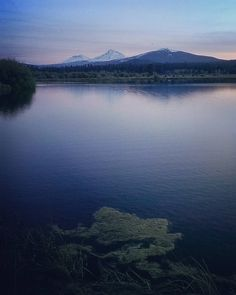    Photo from @photosonfire55    Phalarope Lake and Three Sisters from Black Butte Ranch    Image selected by @ericmuhr    Join us in exploring Oregon wherever you are and tag your finds to #Oregonexplored    #PhalaropeLake #ThreeSisters #BlackButteRanch #Oregon    by oregonexplored