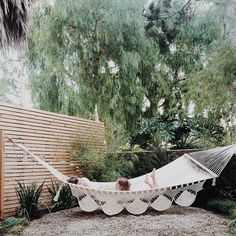 Love this slat fence/privacy wall. And the hammock is great, too! #woodenfence #fencing #woodenslats