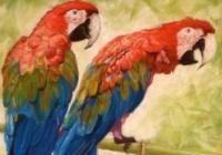 2.1.2 Állatkép festése 2.rész