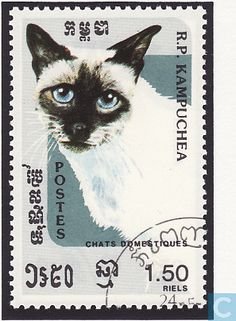 Postage Stamps - Cambodia - cats