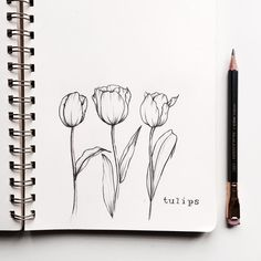 Finally got these tulips done! And my pencil keeps on getting shorter and shorter as this challenge goes on #floralsyourway . . . #flowers #floralillustration #art #illustration #sketch #tulips #vintageflowers #flora #floral #blackwing #plantlady #flowerillustration #flowerdrawing #drawing #instaflowers #flowersofinstagram #instadaily #instagood #instaart #flowerstagram #artofinstagram