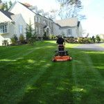Spring Lawn Care Tips Home Improvement Companies, Lawn Care Tips, Lawn Service, Cedar Hill, Lawn Mower, Amazing Gardens, Outdoor Power Equipment, The Help, Golf Courses