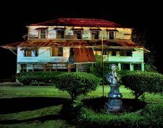Suriname Bittersweet