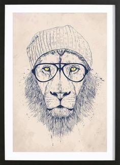 Cool lion als Premium Poster gerahmt