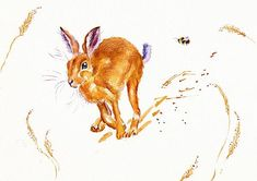 A young hare dashes away from trouble.