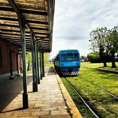 Te comparto fotografías que tomé en la estación Los Cardales, un pueblo a 80 km al norte de Buenos Aires.