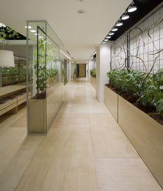 KONO DESIGNS - Urban-Farm