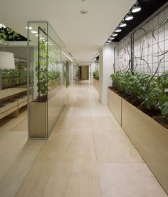 KONO DESIGNS - Urban-Farm