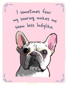 French bulldog saying by kasey