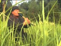 Sundanese Flute intrument that can remedy liver