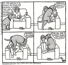 Pretty sure this is Kody's thought process when getting in the recliner with me, lol!