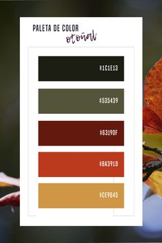 Paleta de color de inspiracion otoñal para tus diseños.  Gama de colores para tu feed de Instagram.  Autumn color palette.   #amarillo #otoño #colorotoño #design #colors #colortheme #colorscheme #colorpalette #colorinspiration #autumncolor #verdeotoño