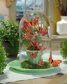 Under glass: Celebrate spring with this terrarium-style display featuring pretty winged critters, as seen on The Martha Stewart Show. It makes a fun alternative to a traditional seasonal floral arrangement. Butterfly Party, Butterfly Birthday, Butterfly Crafts, Butterfly Wedding, Wedding Flowers, Butterfly Centerpieces, Butterfly Decorations, Table Decorations, Diy Decoration