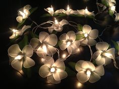 Fairy Lights - 20 White Color Flower Fairy String Lights Hanging Wedding Gift Party Patio,Bedroom fairy lights,Indoor string lights. by Icandylighting on Etsy https://www.etsy.com/listing/160674991/fairy-lights-20-white-color-flower-fairy