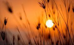 Enciclopedia Curiozitatilor - Curiozitati interesante din lume de la A la Z Sunset Color Palette, Nature Color Palette, Sunset Colors, Color Palettes, Stonehenge, Amazing Photography, Nature Photography, Lightroom, Photoshop