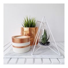 """COPPER Concrete Candles ($45) and COPPER Plant Pouches ($39.95 large) in stock now x"" Photo taken by @outwithaudrey on Instagram, pinned via the InstaPin iOS App! http://www.instapinapp.com (10/08/2015)"