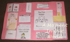 My 5 Senses Lapbook - A Moment in our World