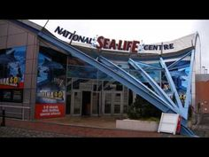 National Sealife Centre Selly-Oak City of Birmingham - YouTube