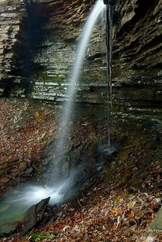 Bearded Waterfall located in the Ozark National Forest in Arkansas Places To Travel, Places To See, Ozark National Forest, Beautiful Waterfalls, Beautiful Landscapes, Closer To Nature, Natural Wonders, Outdoor Camping, State Parks