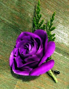 lisianthus boutonniere Beautiful Roses, Our Wedding, Flowers, Plants, Gardens, Illusions, Outdoor Gardens, Plant, Royal Icing Flowers