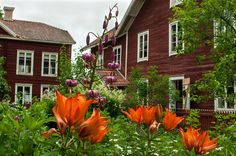 Scandinavian Xperience |Erik-Anders - a farmhouse of Hälsingland, Images, Stay at a Hälsingegård, Söderhamn, Close to nature